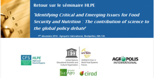 Retour sur le séminaire HLPE 'Identifying Critical and Emerging Issues for Food Security and Nutrition : The contribution of science to the global policy debate