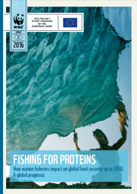 Report: Fishing for proteins