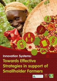 Is the innovation systems approach the answer to inclusive development?