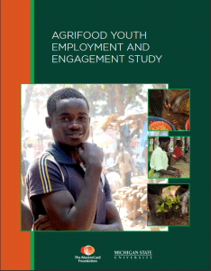 Publication : Agrifood youth employment and engagement study
