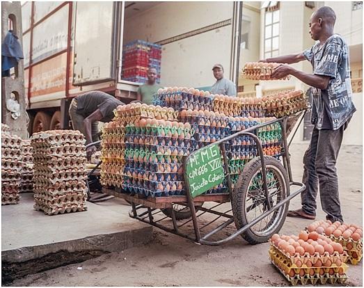 Nourrir l'Afrique : une urgence humanitaire, une opportunité pour les PME africaines