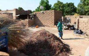 The Impact of Inventory Credit on Food Security and Rural Livelihoods in Burkina Faso