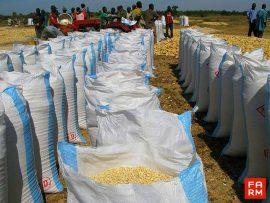 Analyse de FARM : A la recherche du « bon niveau » de soutien à l'agriculture