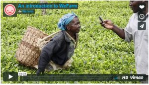 WeFarm: Connecting Small farmers without internet