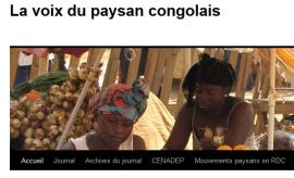 La Voix du Paysan congolais : l'agriculture familiale menacée en RDC par le commerce transfrontalier