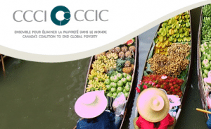 NASAN : Regard critique du Groupe de réflexion sur la sécurité alimentaire (GRSA)