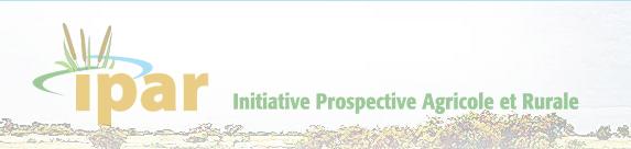 IPAR recrute un(e) assistant(e) de direction bilingue