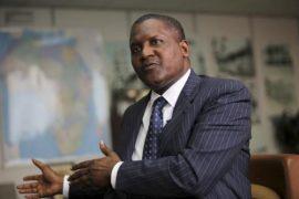 Brève : Dangote se lance dans l'agroalimentaire au Nigéria