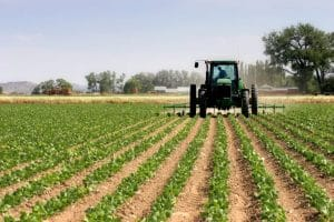 Idées pour le développement: Le crédit agricole au Maroc