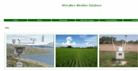 AfricaRice: Une nouvelle base de données météorologiques en ligne