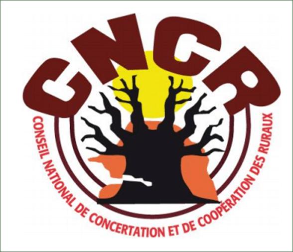 CNCR : Rapport sur le suivi des exploitations familiales au Sénégal (2015-2016)