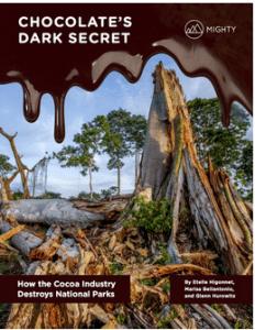 Côte d'Ivoire: Rapport sur la deforestation amère du chocolat