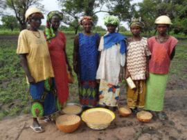 6ème édition de la Foire Ouest Africaine de Semences Paysannes