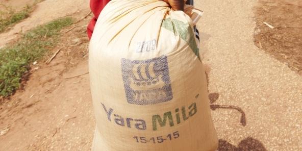 Agroalimentaire : Yara, le spécialiste norvégien des engrais, joue la carte des petits exploitants