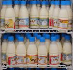 Projet Nariindu : quelles différences entre centre de collecte et mini-laiterie ?
