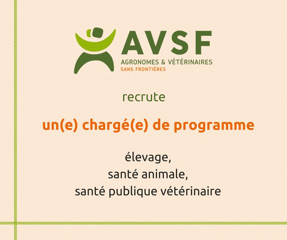 AVSF recherche un(e) chargé(e) de programme