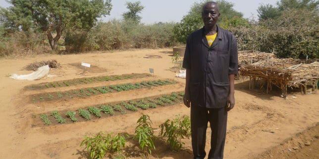 Article Le Monde: Au Niger la formation agricole comme alternative à l'école