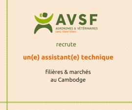 AVSF recherche un(e) assistant(e) technique filières et marchés au Cambodge