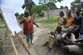 FAO: Lancement d'une plateforme mondiale sur la qualité des Champs écoles des producteurs