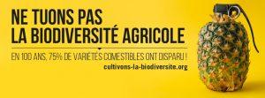 Disparition alarmante de la biodiversité agricole : AVSF lance une campagne de sensibilisation pour changer la donne