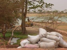 Investissements agricoles en Afrique : pour un dialogue public-privé