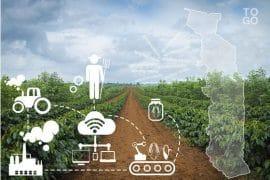 Changer le visage de l'agriculture togolaise : le Togo va créer 9 agropoles