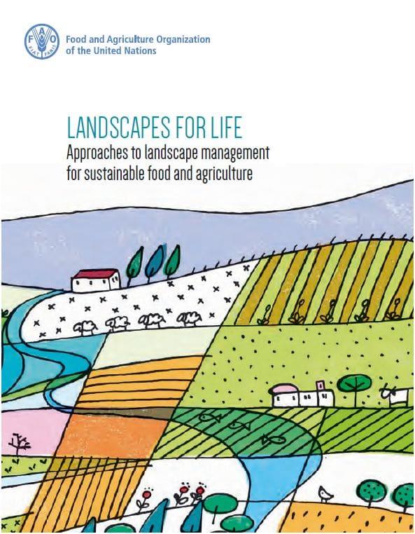 Rapport : Les territoires, au service d'une agriculture et d'une alimentation durables selon la FAO