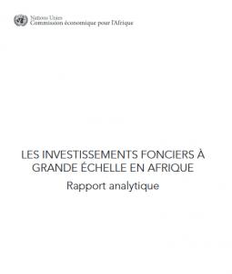 Rapport analytique: les investissements fonciers à grande échelle en Afrique