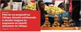 """Point de vue prospectif sur l'Afrique : """"Sécurité nutritionnelle: la dernière longueur du programme de sécurité alimentaire de l'Afrique"""""""