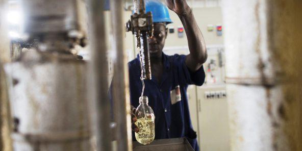 L'État sénégalais face au défi de l'arachide
