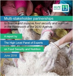 Report: Multi-stakeholder partnerships to finance and improve food security and nutrition in the framework of the 2030 Agenda
