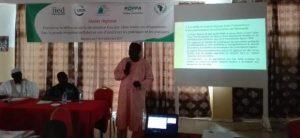 Compte-rendu d'atelier : Poursuivre la réflexion sur la sécurisation foncière (dans toutes ses dimensions) dans la grande irrigation au Sahel en vue d'améliorer les politiques et les pratiques