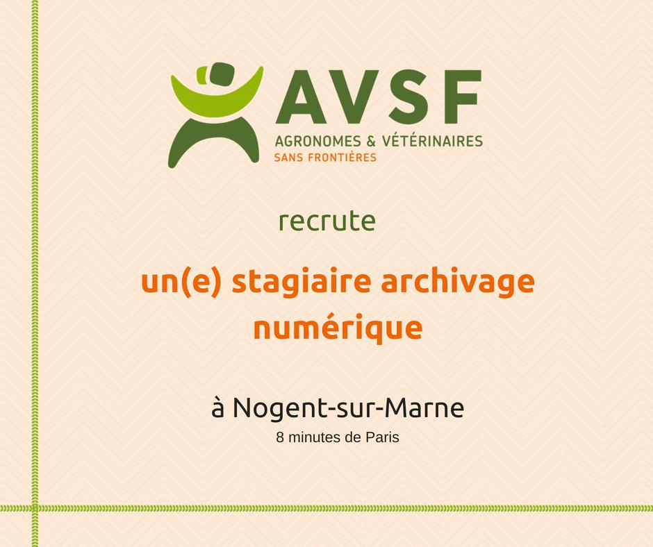 AVSF recherche un stagiaire archiviste à Paris