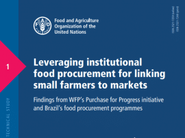 Report: Leveraging institutional food procurement for linking small farmers to markets