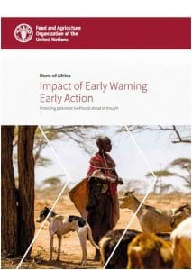 Rapport : Impact of Early Warning Early Action