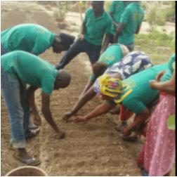 Revue AGRIDAPE : Agriculture durable et insertion des jeunes