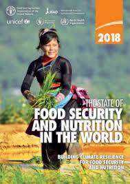 Nouvelle augmentation de la faim dans le monde : SOS Faim pour la transformation du modèle agro-alimentaire