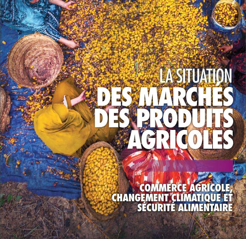 Rapport : La situation des marchés des produits agricoles 2018