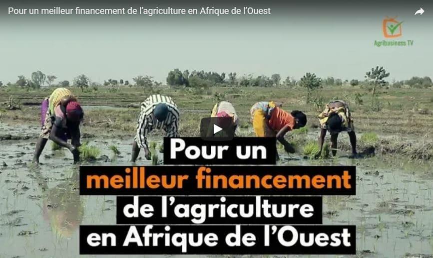 Financement de l'agriculture en Afrique : le ROPPA a tenu un atelier à Ouagadougou