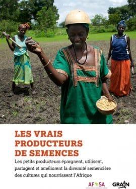 Rapport : Les vrais producteurs de semences