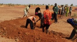 Etude : Contribution à l'adaptation au changement climatique et à la résilience des producteurs au Sahel