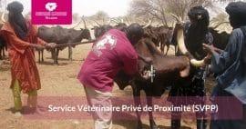 Note : Service Vétérinaire Privé de Proximité