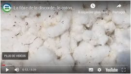 Vidéo : La fibre de la discorde