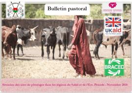Bulletin pastoral Novembre 2018: Situation des sites de pâturages dans les régions du Sahel et de l'Est