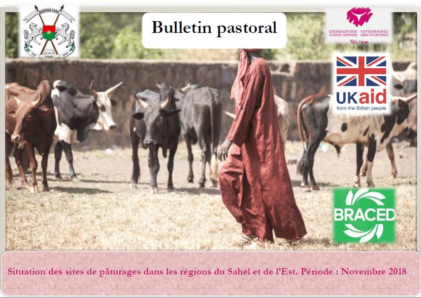 Bulletin pastoral Octobre 2018: Situation des sites de pâturages dans les régions du Sahel et de l'Est