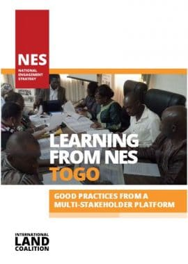 "Report : ""Learning from NES Togo. Good Practices from a Multi-Stakeholder Platform"""
