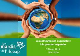 Conférence-débat : La contribution de l'agriculture à la question migratoire