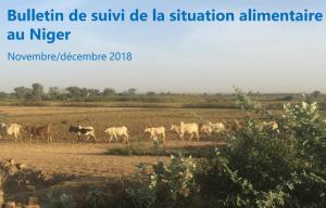 Bulletin de suivi de la situation alimentaire au Niger : Novembre - Décembre 2018