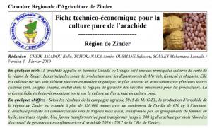 Fiche technico-économique pour la culture pure de l'arachide / Région de Zinder