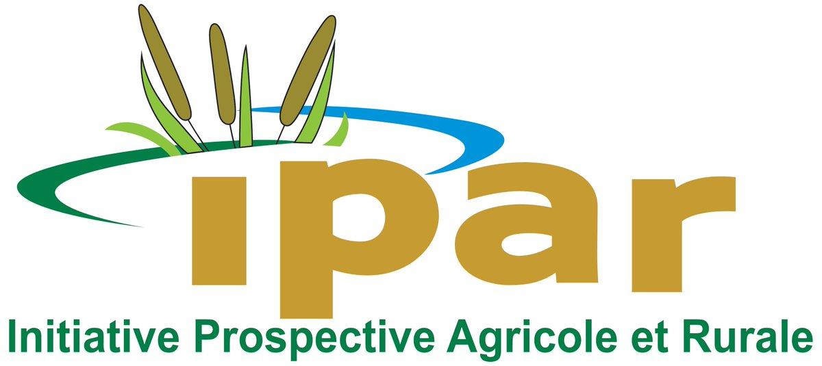 IPAR recrute un expert(e) en gestion des connaissances